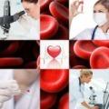 Komplex vérvitalitás mérés élő- és szárazvér méréssel