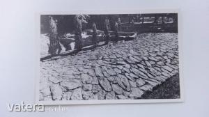 Szombathely - Római út a püspöki kertben/ képeslap (*45)