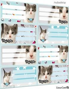 Cicás füzetcímke íves 8 db/ív Pet Fluff Kitten