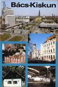 Gera Sándor: Bács-Kiskun (Magyarország megyéi)