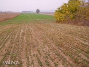 általános mezőgazdasági ingatlan Balatonkeresztúr