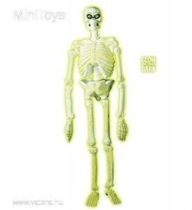 Mozgatható neon csontváz halloween dekoráció, 150 cm - 13120 Ft - Vatera.hu Kép