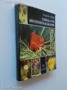 Tudor Opris: Csodálatos növényritkaságaink (*88)