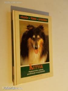 Rino Falappi: Kutyák / Megismerésük, tartásuk, gondozásuk és tenyésztésük (*KZJ)