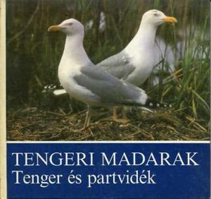 Tengeri madarak-Tenger és partvidék