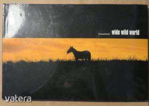 Tomasz Gudzowaty: Wide Wild World (α)