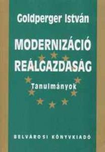Modernizáció - Reálgazdaság (Tanulmányok)