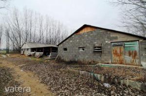 általános mezőgazdasági ingatlan Dabas