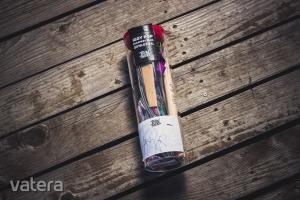 BudapestPark - BinThere jótékonysági aukció IGGY POP aláírt