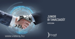 Junior BI tanácsadó   Dyntell Software